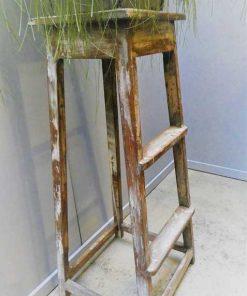 Vintage houten plantentafel-3