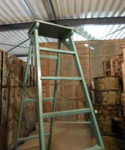 Oude opgeknapte bibliotheek ladder-2