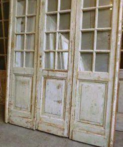 Antique orangery doors